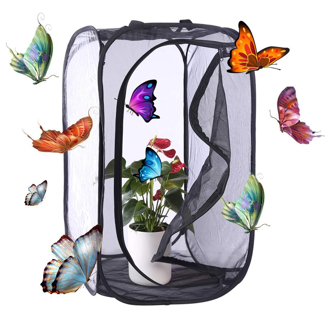 Forweilai - Casette per farfalle - Insetti Habitat Gabbia Repellente - size Large (Nero)