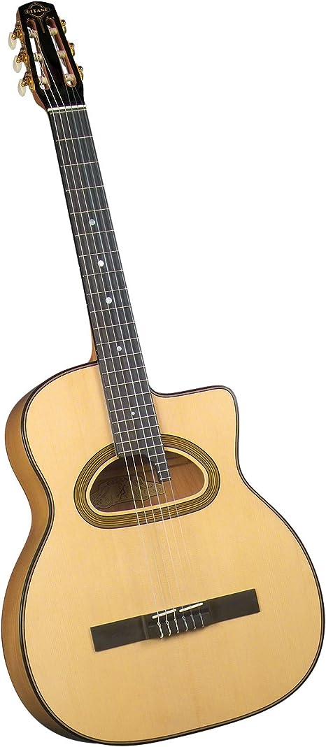 Gitane dg-560 profesional cuerdas de nailon Flamenco/Gypsy ...