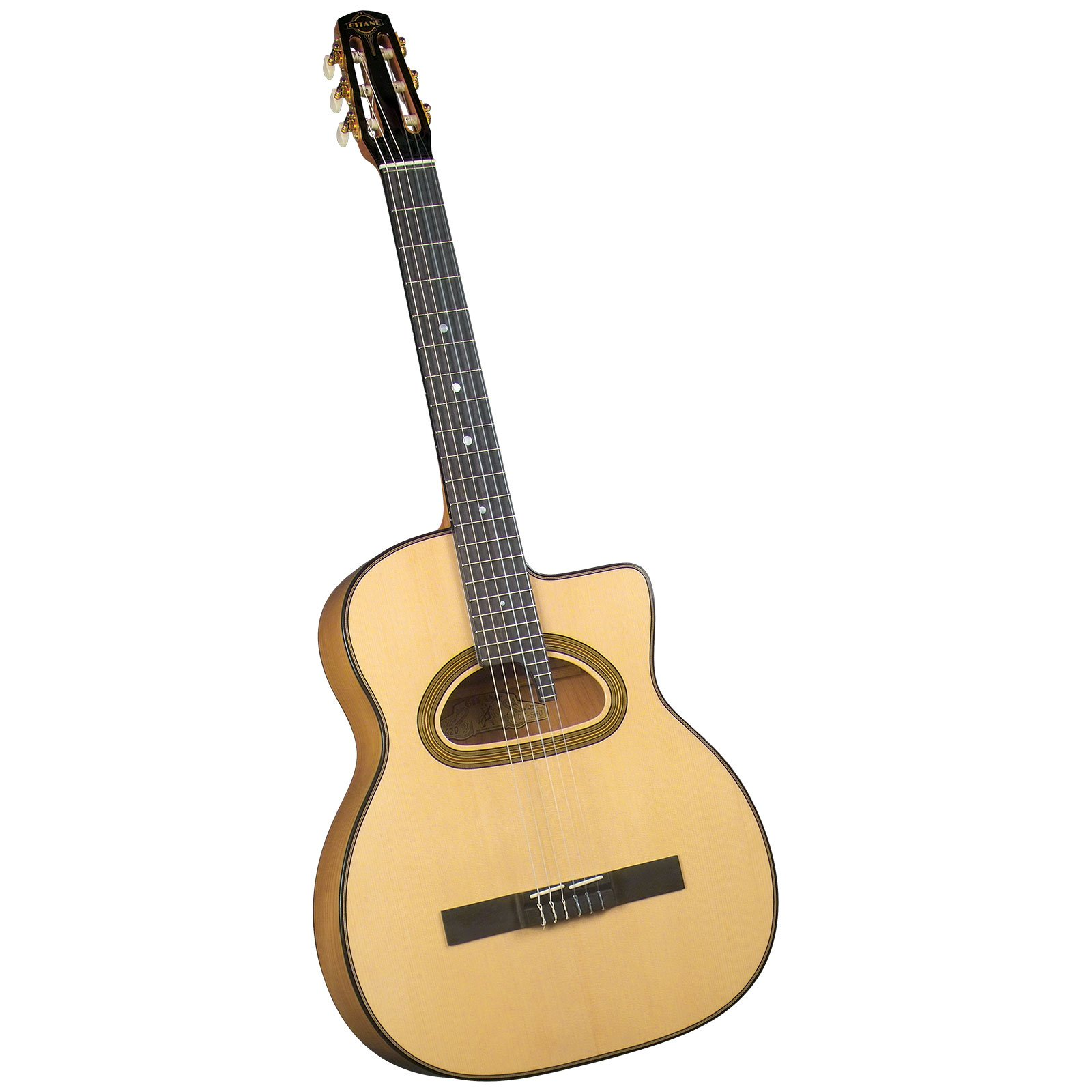 Gitane DG-560 Professional Nylon String Flamenco/Gypsy Jazz Guitar