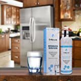 W10295370A W10295370 Refrigerator Water Filter Fits for Everydrop EDR1RXD1 P4RFWB Pur Filter1 Kenmore 46-9930 46-9080,2 PACK