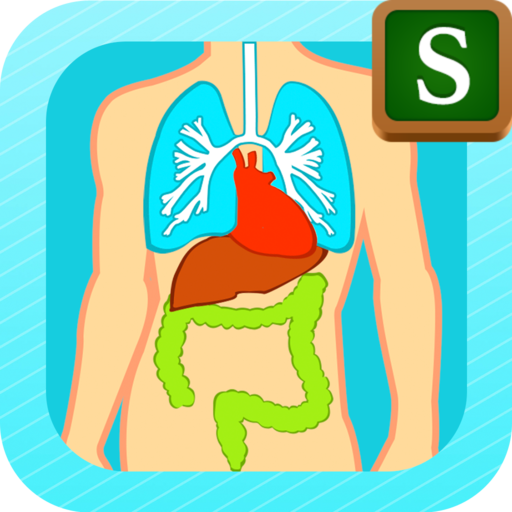 Anatomy Lesson - Portuguese Dictionary For Kids