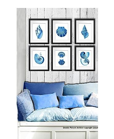 Blue seashells decor art prints set of 6 unframed beach coastal decor wall art