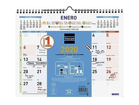 Amazon.com : Finocam - Wall Calendar 2020 Colour Type ...