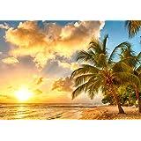 絵画風 壁紙ポスター (はがせるシール式) 夕焼けのビーチ 夕陽とヤシの木 カリブ海 楽園 キャラクロ BCH-027A2 (A2版 594mm×420mm) 建築用壁紙+耐候性塗料