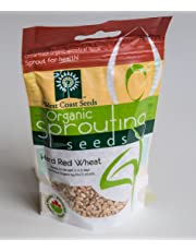 Sprouting Seeds - Hard Red Wheat Certified Organic