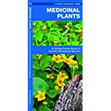 Medicinal Plants: A Folding Pocket Guide to Familiar Widespread Species (Outdoor Skills and Preparedness)