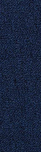 Home Queen Indoor Outdoor Commercial Runner Rugs Navy Color 2 x 3 – Area Rug