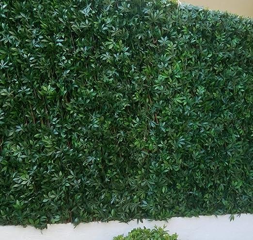 Fensterbild celosía de hojas vid en blanco verde en PVC – Dim: 1 ...