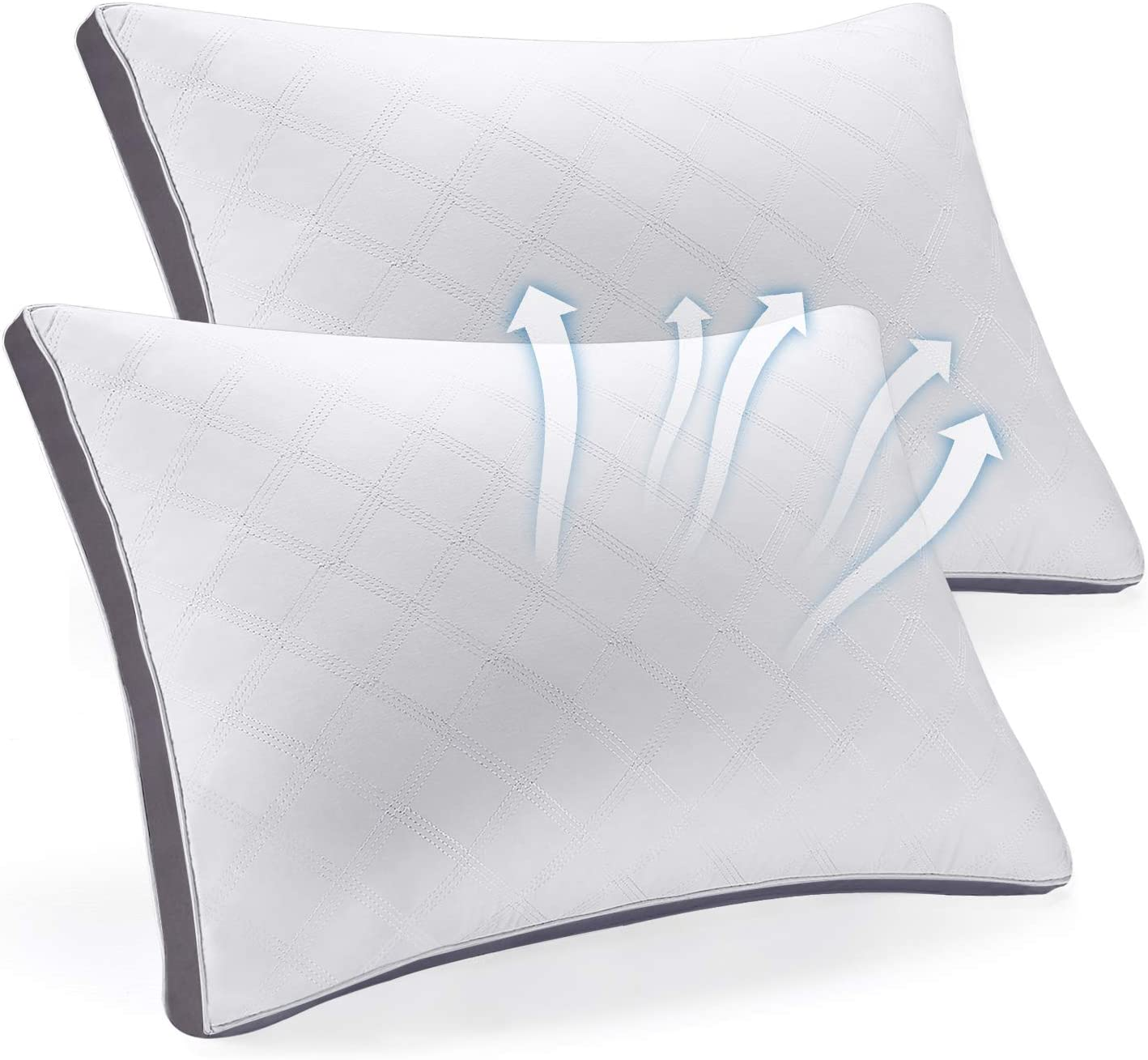SEPOVEDA Bed Pillows