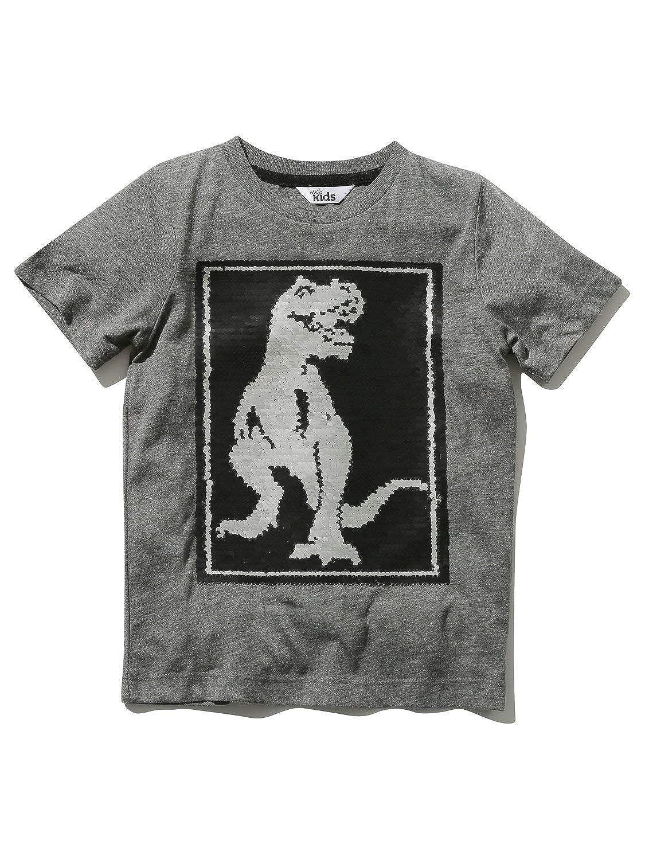 M& Co Boys Charcoal Grey Short Sleeve Crew Neck Two Way Sequin Dinosaur Design T-Shirt