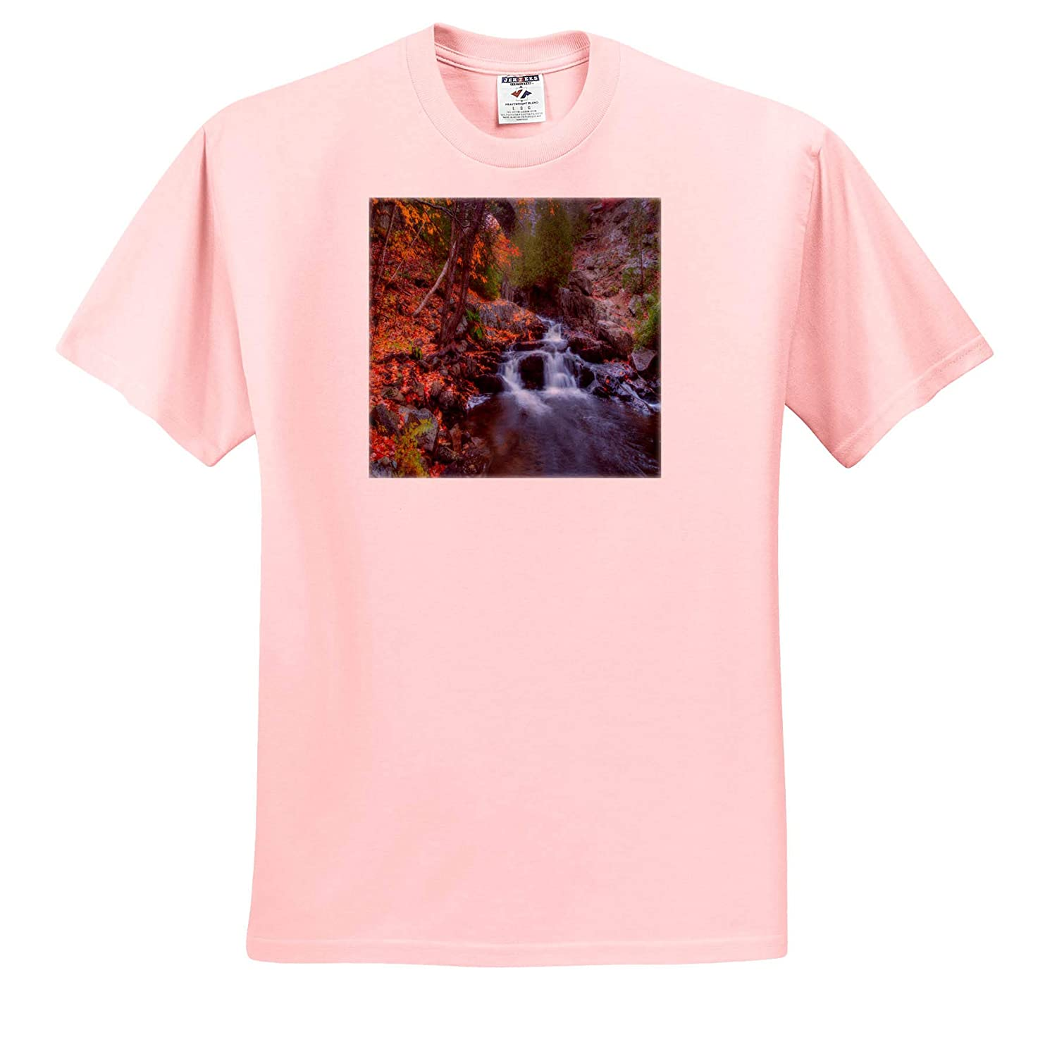 Forest Stream During The Fall 3dRose Mike Swindle Photography Adult T-Shirt XL ts/_317149 Landscapes