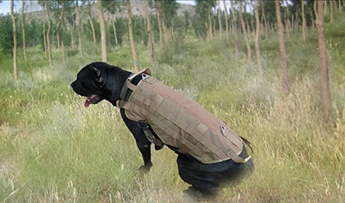 Chaleco táctico para perro militar arnés – Chaqueta para Perros de ...