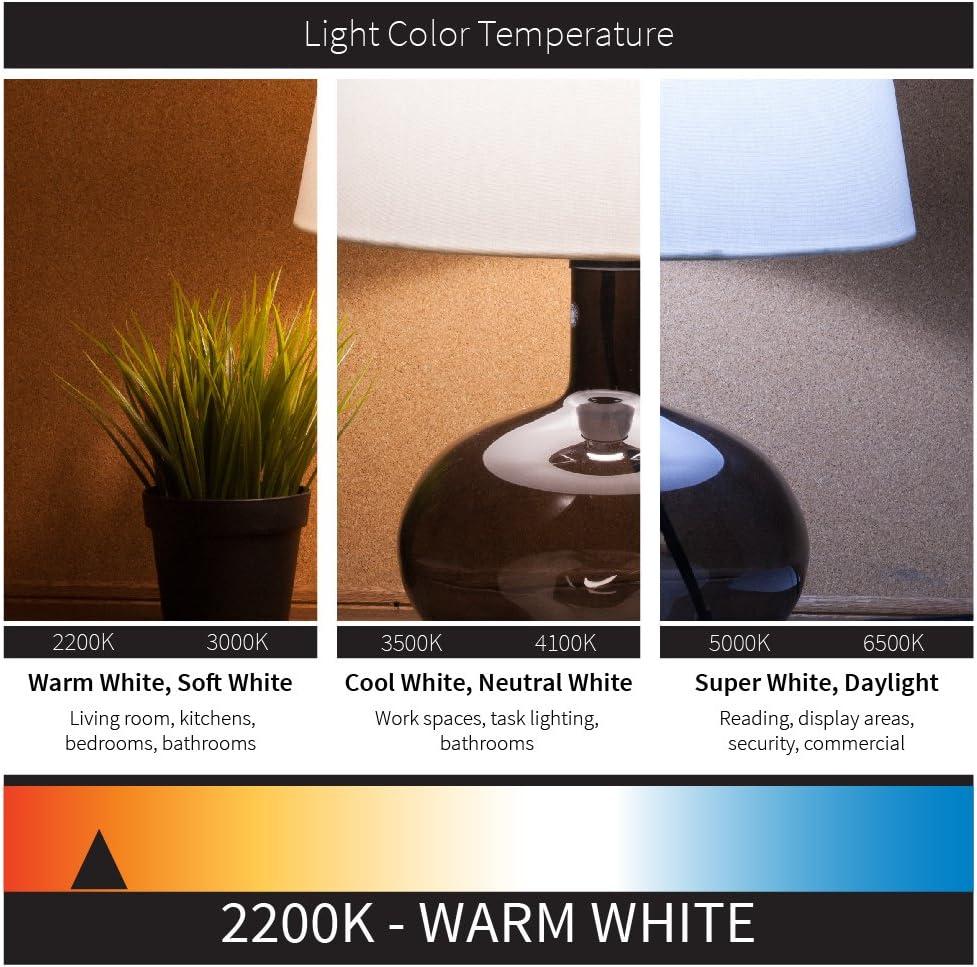 Amber Glass 40w Equivalent Sunlite 80894-SU Vintage Edison ST19 ST64 LED Filament Style Light Bulb 6 Watt 22K 1 Pack Warm White 450 Lumens Dimmable