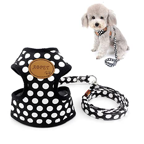 Amazon.com : Zunea Polka Dot Small Dog Harness Adjustable No Pull ...