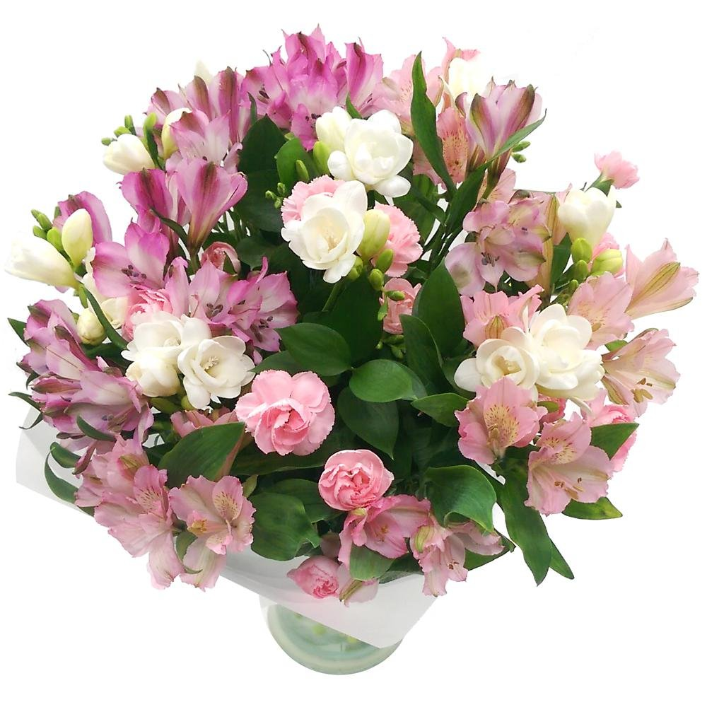 Clare Florist Tender Blooms Fresh Flower Bouquet - Pink and White Spray Carnations