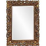 Howard elliott 21184 talida mirror black for Better homes and gardens baroque wall mirror black
