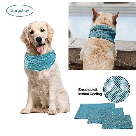 Gorgebuy - Bandana de Verano para Perros y Gatos con Cuello de Gato y Agujero para la Correa: Amazon.es: Productos para mascotas