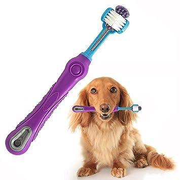 OFKPO Cepillo de Dientes para Perros,Púrpura