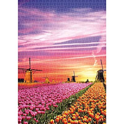 Holland Windmills Tulips Puzzles for Adults 1000 Piece Jigsaw Puzzles for Adults Large Jigsaw Puzzles Floor Puzzle Kids DIY Toys for Home Decor 3D Puzzles Brain Teaser Puzzles Board Game Family: Toys & Games