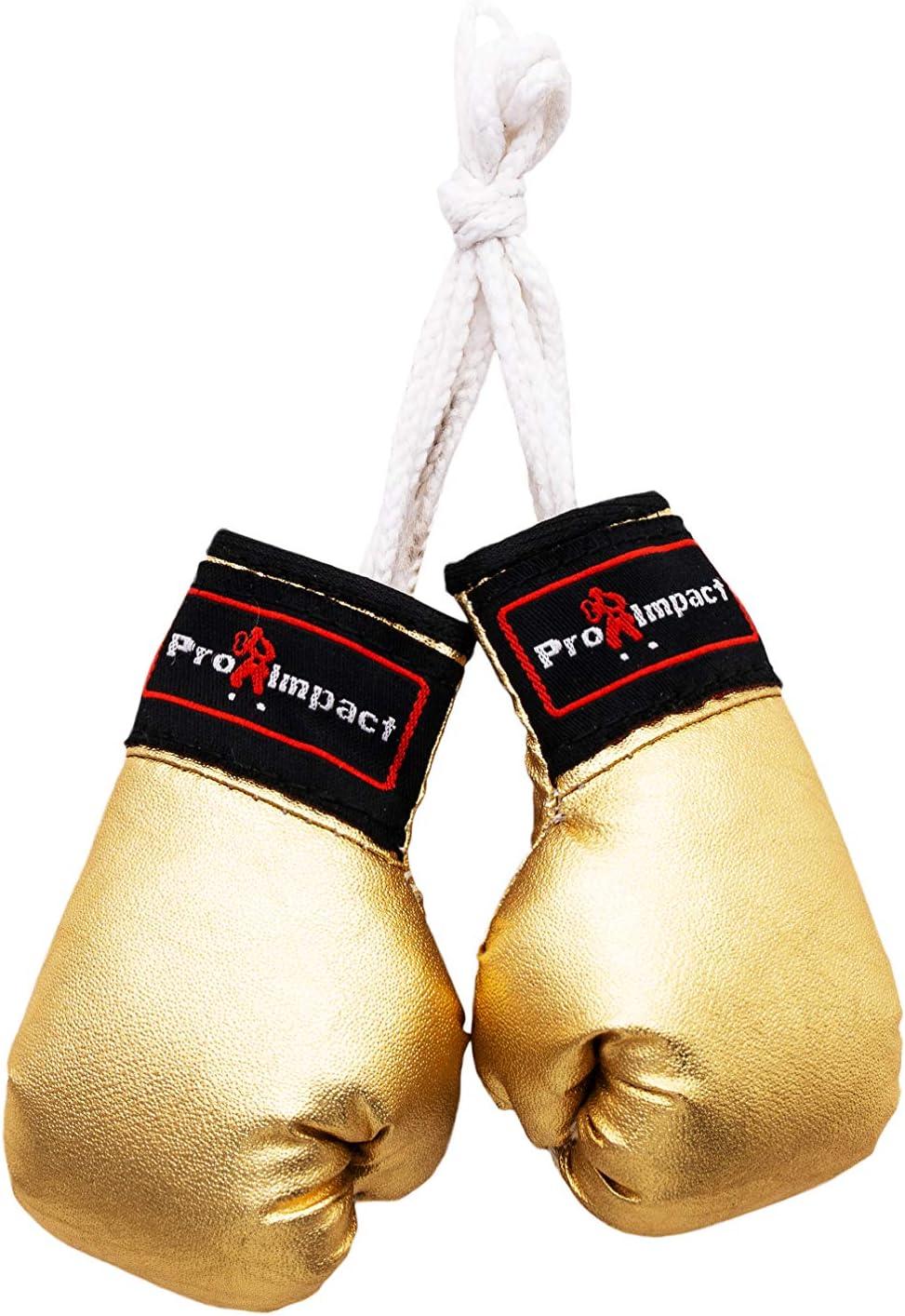 Amazon.com: Pro Impact Mini guantes de boxeo – Guantes de ...
