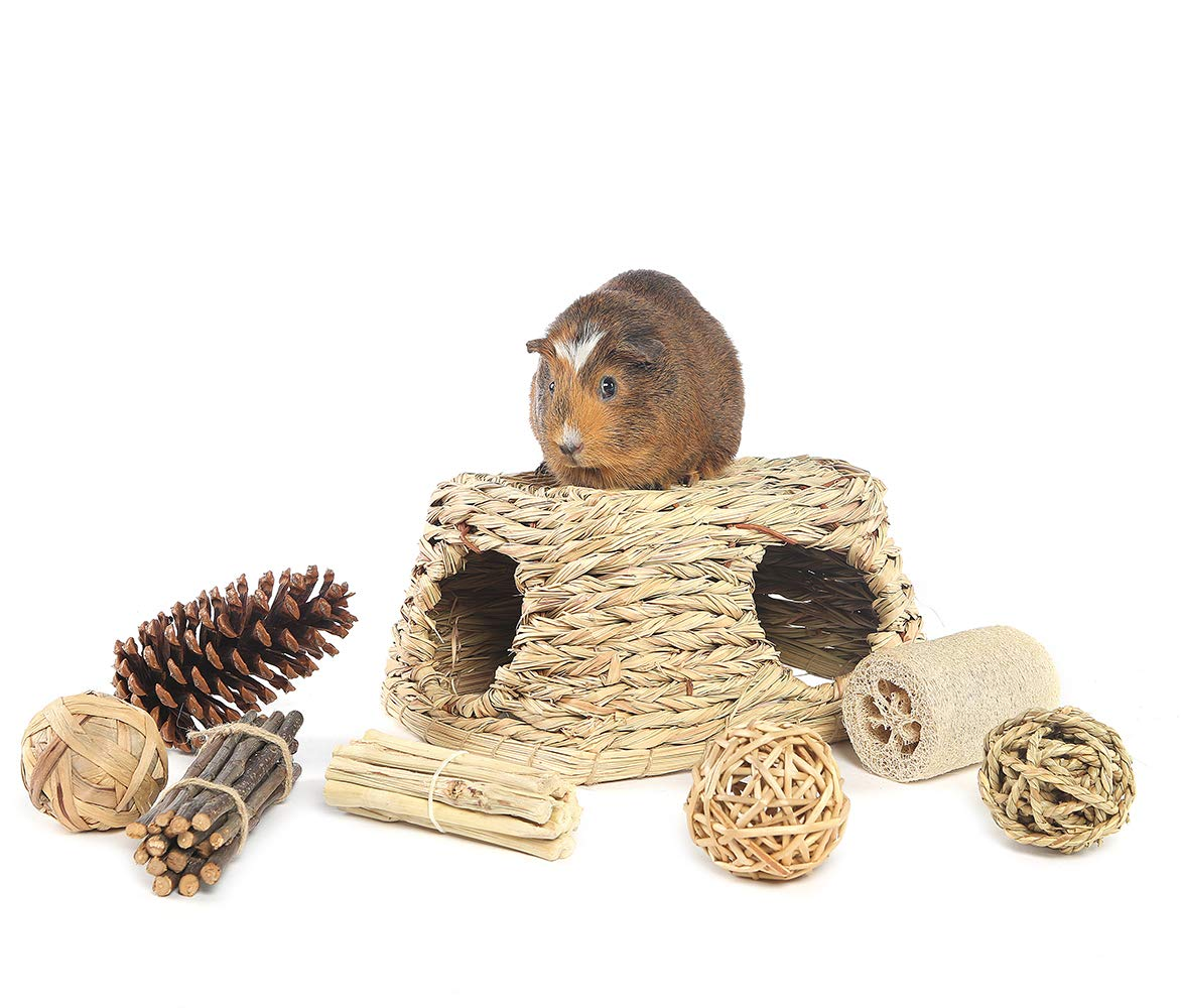 Niteangel Nature's Hideaway Grass Hut Play Chew Toys Guinea Pig, Rat