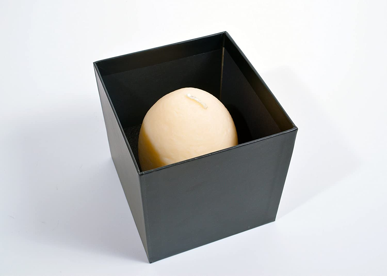 TheCreativeDesk® Green TheCreativeDesk T-Rex Dinosaur Hatching Egg Candle