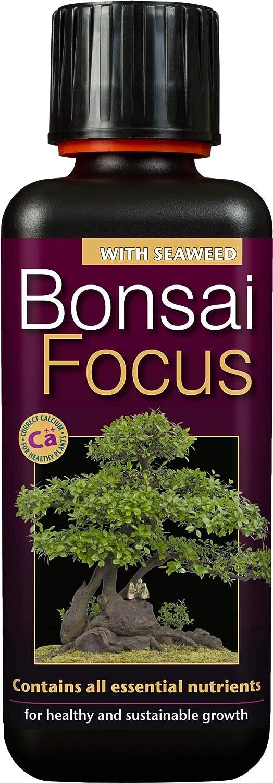 primo bonsai pepper tree: chiedo consigli - Pagina 3 71h4EGJPKhL._AC_SL1500_
