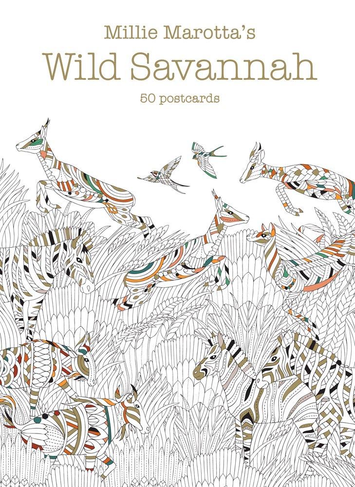 millie marottas wild savannah postcard box 50 postcards a millie marotta adult coloring book
