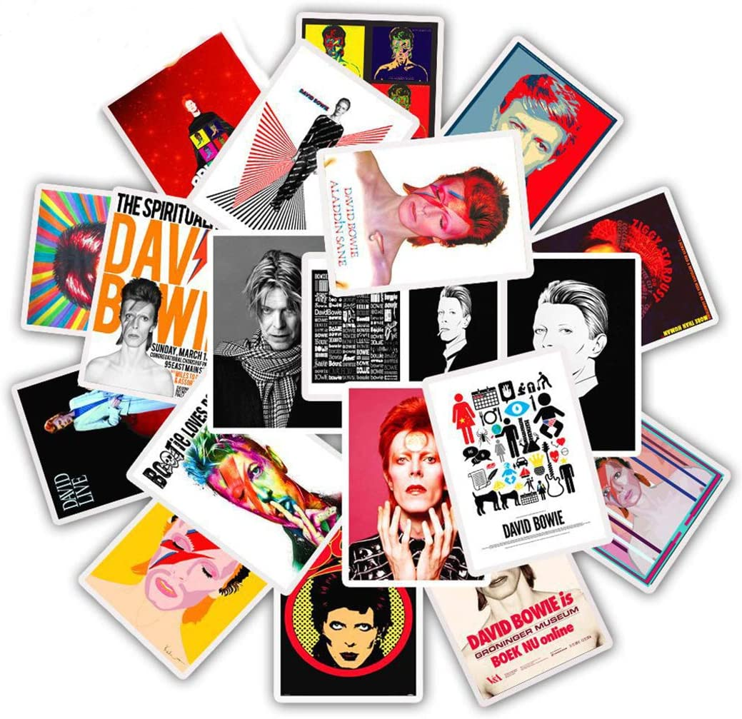 David Bowie Stickers for Water Bottles 25 Pcs Cute,Waterproof,Aesthetic,Trendy Stickers for Teens,Girls Perfect for Waterbottle,Laptop,Phone,Travel Extra Durable Vinyl