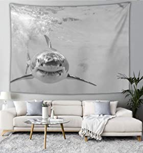 NiYoung Tapestry Mandala Tapestry Wall Hanging Tapestries Wall Tapestry Great White Sharks Newest Wall Blanket Wall Decor Wall Art Home Decor Collage Dorm Decoration 60 x 90 Inches