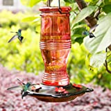 Juegoal Glass Hummingbird Feeders for Outdoors, 26 oz Wild Bird Feeder with 5 Feeding Ports, Metal Handle Hanging for…
