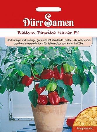 Beliebt Bevorzugt Balkon-Paprika Nazar F1: Amazon.co.uk: Garden & Outdoors @LD_74