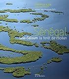 Sénégal : Sine-Saloum la forêt de l'océan