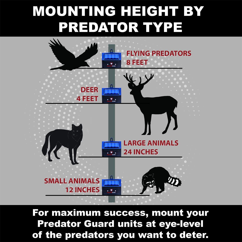 How to install PredatorGuard
