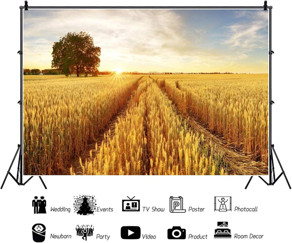 DaShan 8x6ft Polyester Rustic Ranch Wheat Field Harvest Backdrop Country Farm Theme Fall Birthday Party Photography Background Rural Wedding Decor Newborn Baby Wall Autumn Party Banner Photo Props