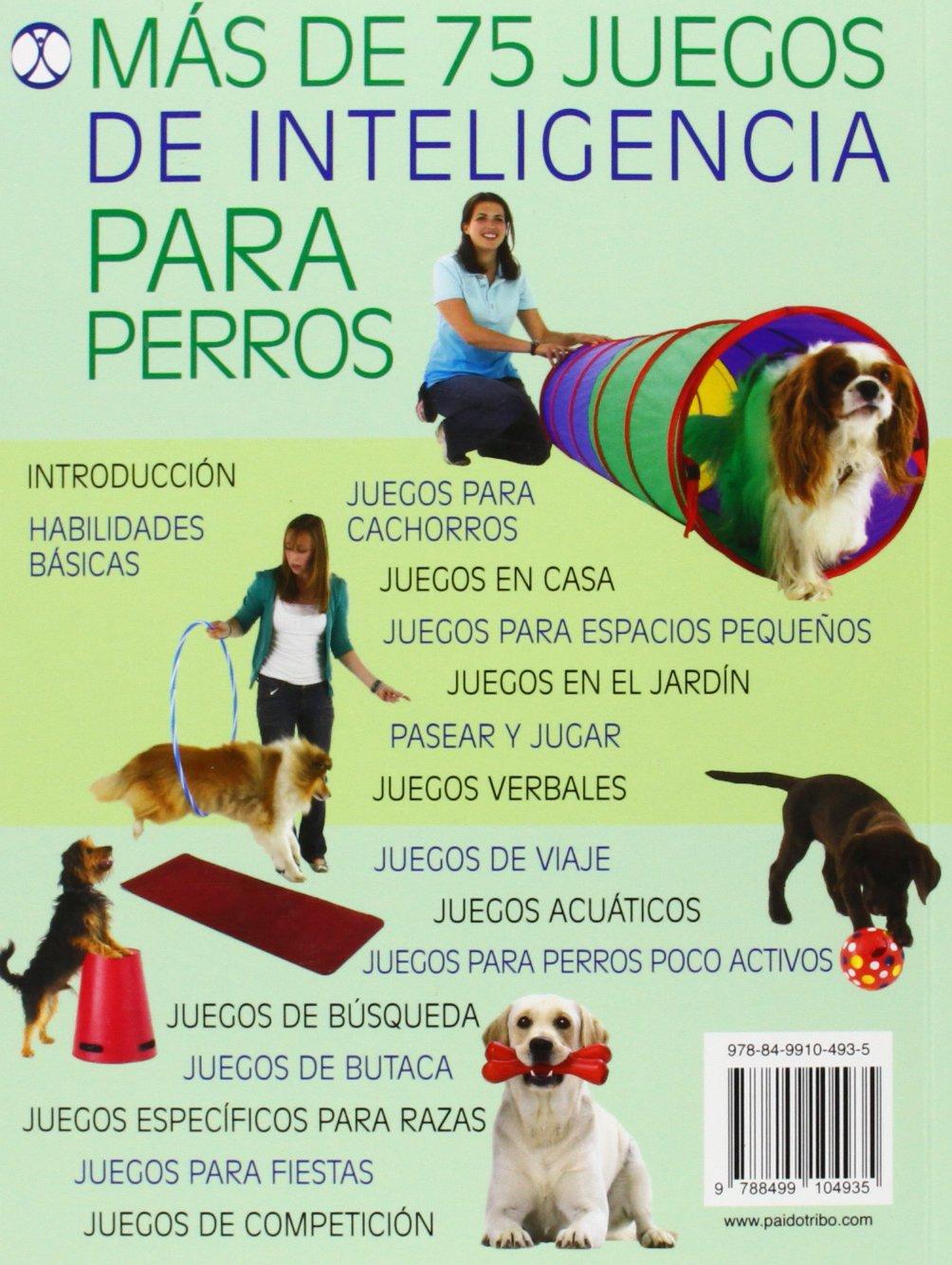 Juegos De Inteligencia Para Perros Color Animales De Compañía Amazon Es Arrowsmith Claire Libros