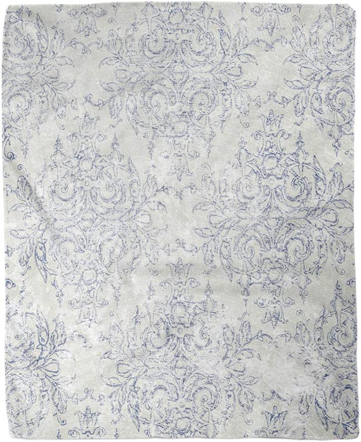 rouihot 50x60 Inches Throw Blanket Blue French Taupe and Navy Toile Beige Antiqued Filigree Warm Cozy Print Flannel Home Decor Comfortable Blanket for Couch Sofa Bed