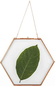 NCYP Small Hanging Hexagon Herbarium Rose Gold Pure Copper Glass Frame for Pressed Flowers, Dried Flowers, Poster, Double Glass, Floating Frame Style, Glass Frame only