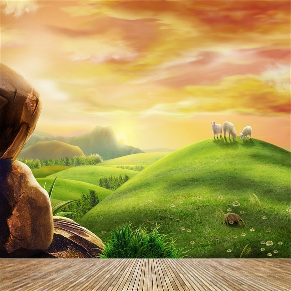 Amazon.com : AOFOTO Photography Girl Backgrounds 8x8ft Backdrop Dreamy Pastoral Scenery Cartoon Painting Rosy Clouds Sheep Grass Hillside Wood Floor Photo ...