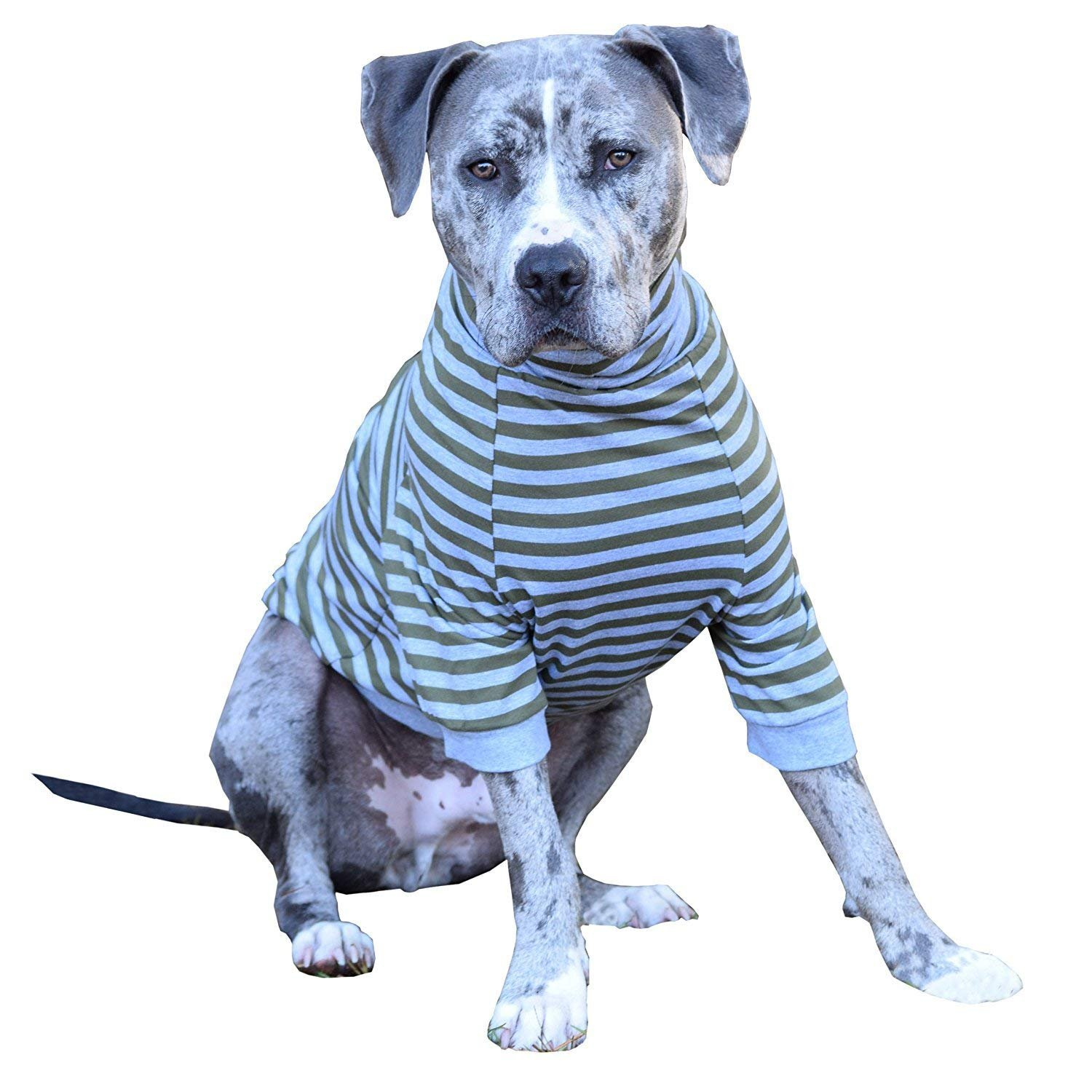 Tooth & Honey Big Dog/Stripe Shirt/Pullover/Full Belly Coverage/for Big Dogs/Pitbull Shirt/Olive and Grey (Extra Large) by Tooth & Honey