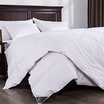 Amazon.com: Puredown Lightweight Down Comforter Light Warmth Duvet ... : quilt warmth - Adamdwight.com