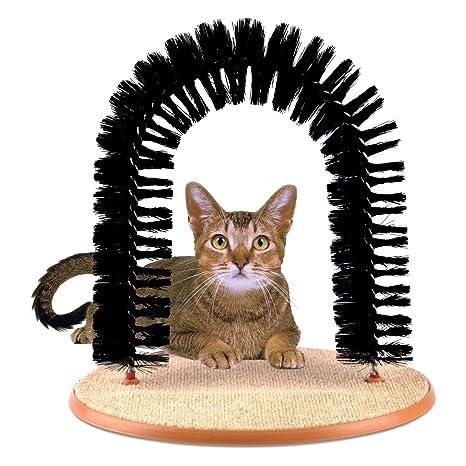 Prime Paws Amazing arco – todo en uno gato Groomer y masajeador rascador
