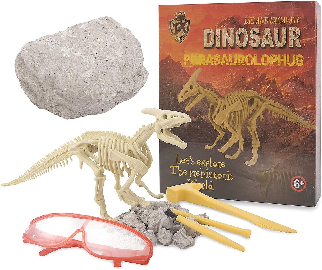 Great STEM Science Gift for Paleontology and Archeology Enthusiasts of Any Age hi!SCI Pirate Treasure Fossil Dig Kit for Kids Break Into 5 Treasure Excavation Bricks