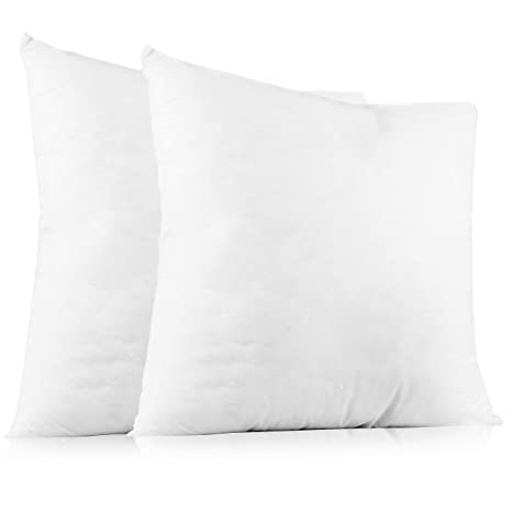 Brilliant Plain Throw Pillow Cushion Inserts White Square Throw Pillows For Couch Sofa Bed 20 Inch X 20 Inch Pillow Insert Set Of 2 Euro Accent Pillow Uwap Interior Chair Design Uwaporg