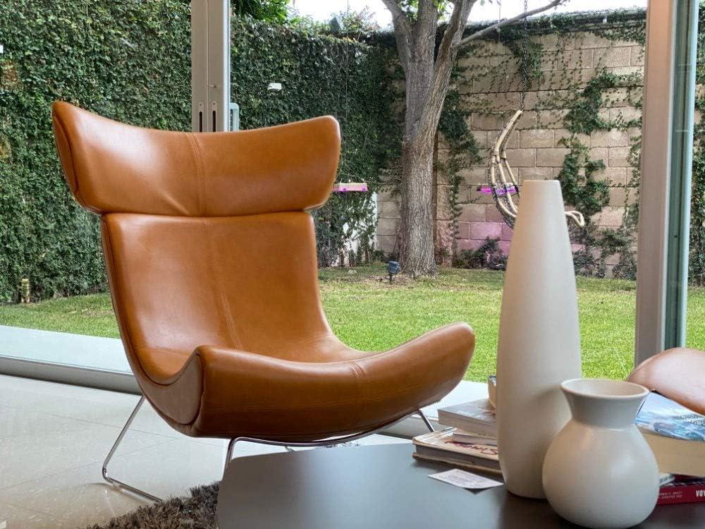LYQZ Simple Canapé Chaise, Loisir Retour Fauteuil inclinable, Chaise Salon Snail Moderne métal Lazy Sofa Chaise for Hôtel (Color : A) C