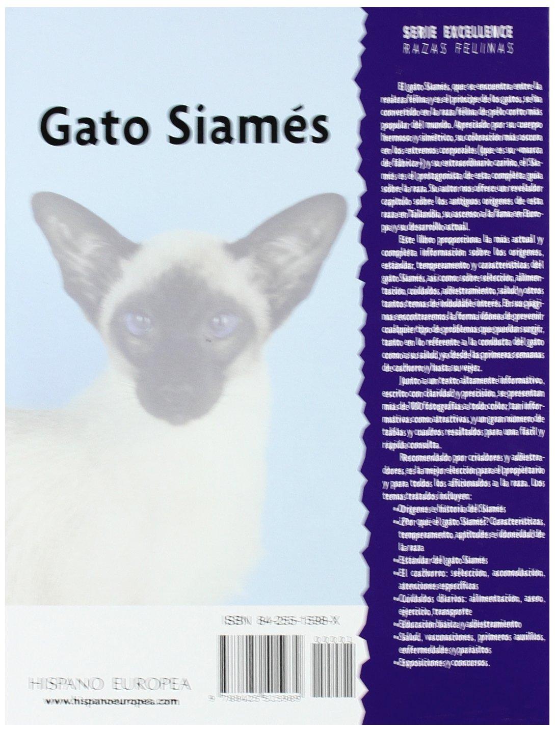 Gato Siames / Siamese Cats (Excellence) (Spanish Edition): D. Jones: 9788425515989: Amazon.com: Books