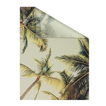 Lichtblick Fensterfolie Selbstklebend Sichtschutz Motiv Palmen Und