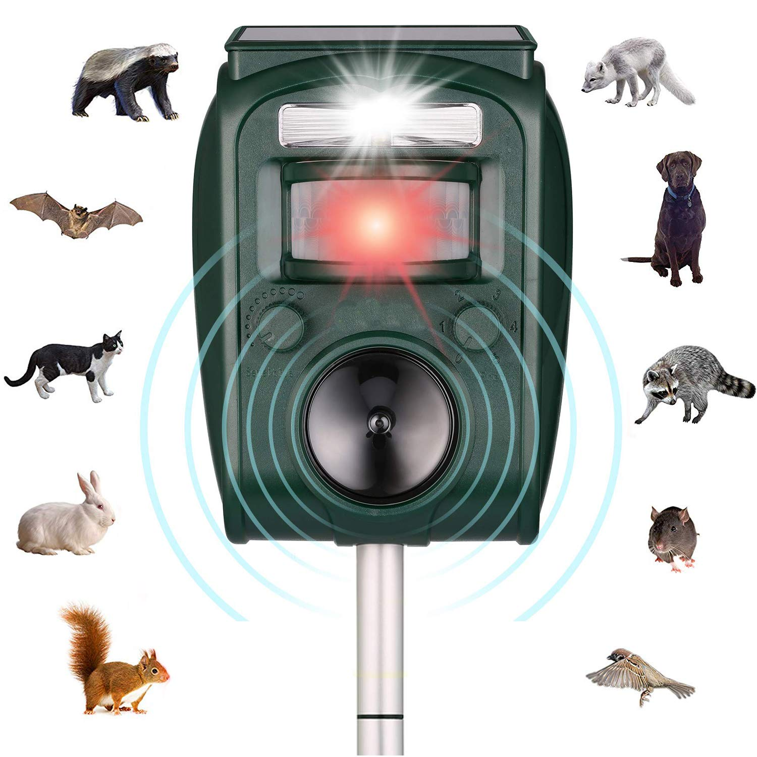 ZYYRSS Animal Repellent Ultrasonic Outdoor Solar Powered Waterproof with Ultrasonic Sound,Motion Sensor and Flashing Light for Fox,Cat,Dog,Deer,Squirrels,Raccoon & More product image
