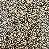 Black Cat Avenue 20'' x 30'' Printed Tissue Paper For Gift Wrapping, 24-Sheet, Leopard