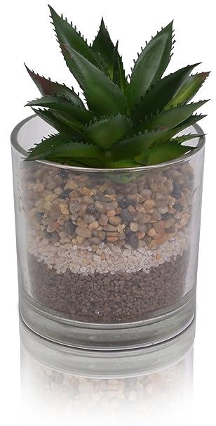 Chiccie Kunstpflanze Mit Sand Im Glas 16cm Kaktus Deko Amazon